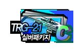 TRG21실버상자 10개