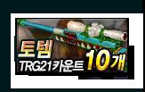 토템 TRG21 카운트 10개